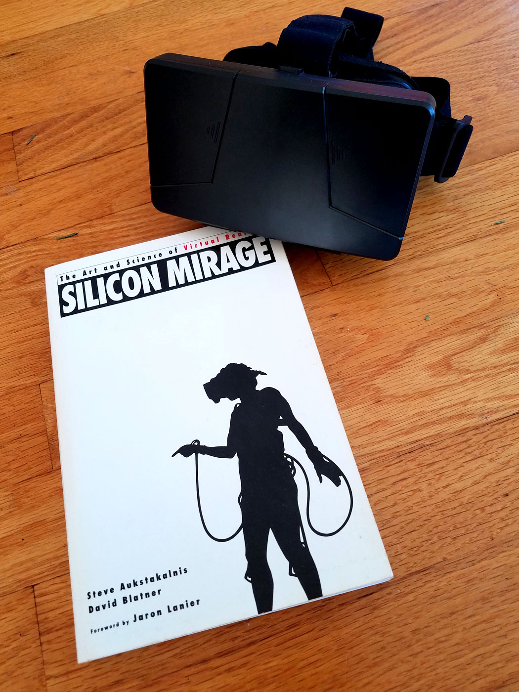 Silicon Mirage book