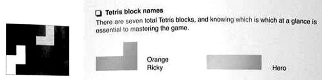 Tetris blocks have names
